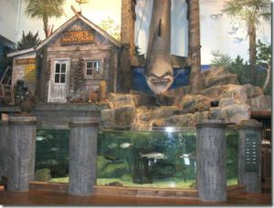 Bass Pro Shop Salt Water Tank
