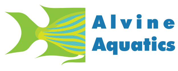 Alvine Aquatics